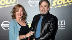 Marilou York biography: What is known about Mark Hamill's wife?