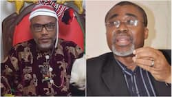 It is illegal for me to continue as Nnamdi Kanu's surety - Abaribe to court
