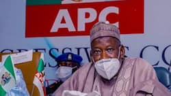 Constitution review: What the World is expecting from Nigeria, Ganduje