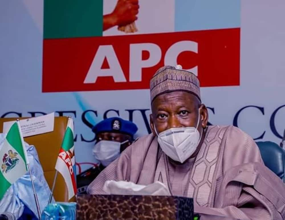 2023: Tinubu in trouble as Arewa youth sends warning message to Ganduje