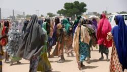 Scarcity of husbands: Single women in Nigeria go spiritual, seek solution to their predicament