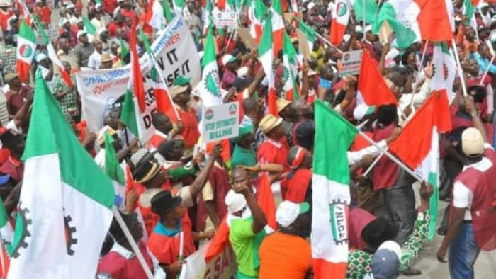 Minimum wage: Great news for Nigerian workers as labour, FG finally reach agreement on percentage increase