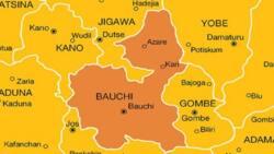 'Yan bindiga sun halaka mutum daya tare da jikkata wani a jihar Bauchi