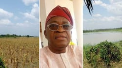 This challenge is too huge to bear - Nigerian farmers raise alarm over debts (photos)