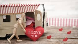 These loving you SMS will make your beloved smile