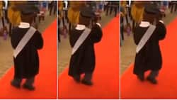 You haven't even started - Social media reacts as little boy celebrates graduation from nursery school with amazing dance steps on red carpet