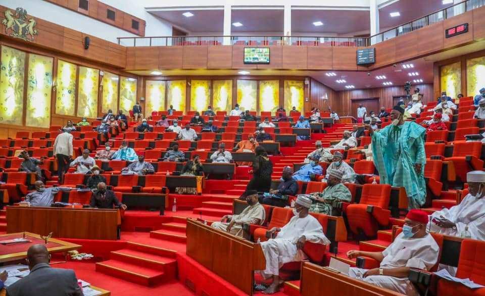 Nigerian Senate during plenary
