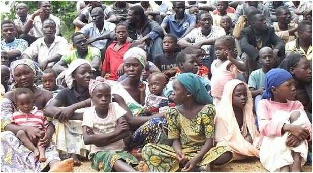 32,000 Cameroonians to seek refuge in Nigeria - UN