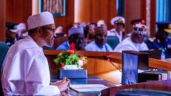 Impeachment of Buhari: Lamido makes bold statement