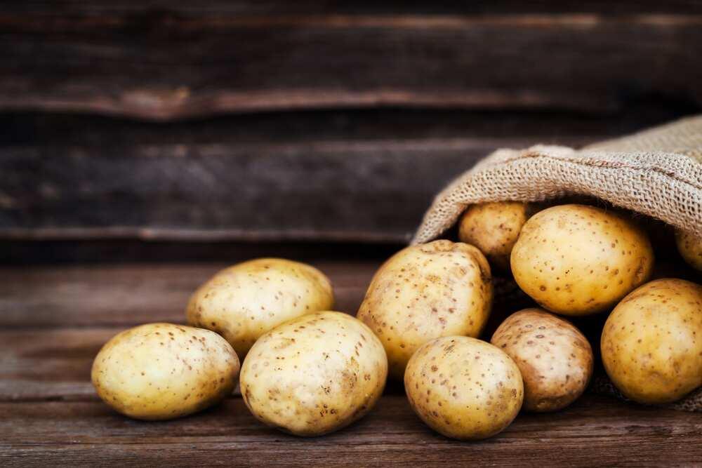 Is potato a vegetable