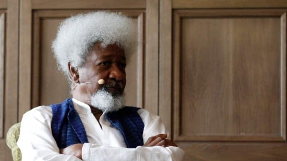 Herdsmen crisis: Wole Soyinka's son reacts to report claiming herders attacked his father