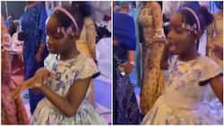 Nigerian kid makes 'butterfly' moves, wows many with her dance skill at wedding ceremony in viral video