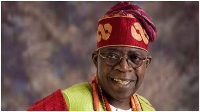 Why Tinubu should become the next president, prominent APC Senator gives important reason