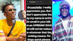 Rejected stones now cornerstones: Many react to news of Mr Eazi and Burna Boy performing at world's biggest music festival