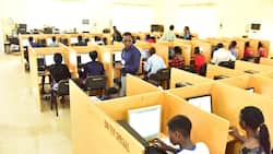 2021 UTME: List of top 10 candidates with highest scores, their states of origin, universities and courses of choice