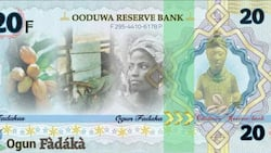 Promoters of Oduduwa Republic unveil new currency, details and photo emerge