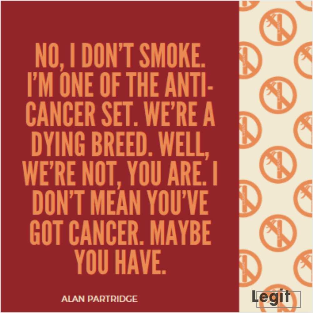 best Alan Partridge quotes