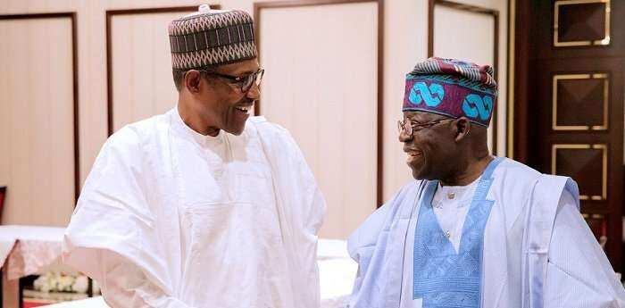 2023 presidency: Why Tinubu should succeed Buhari - APC chieftain - Legit.ng