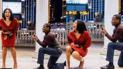 Young man gives his girl surprise proposal during casual photoshoot in adorable video