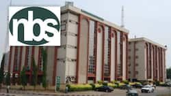 Breaking: Nigeria's inflation rate drops to 17.01% in August, NBS report reveals