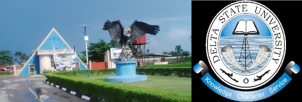 Image result for Delta State University