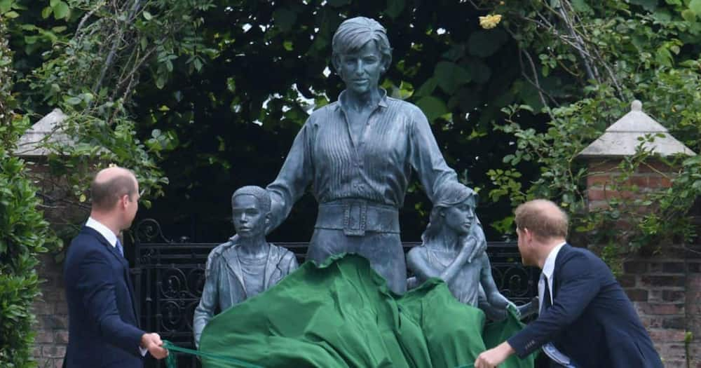 A photo of Prince Harry and Prince William unveiling the statue of Princess Diane.