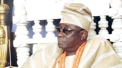 Stop portraying all Fulanis as bad people - Oba of Lagos tells Nigerians
