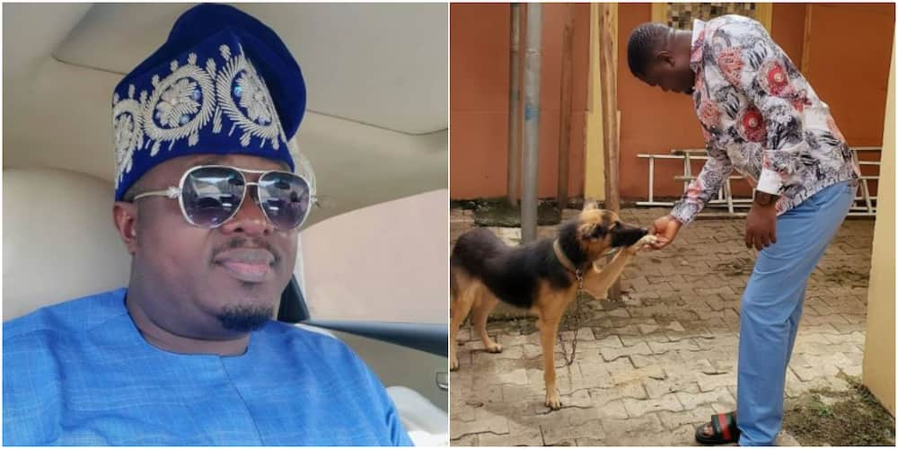 Actor Muyiwa Ademola mourns the death of his dog (photo)