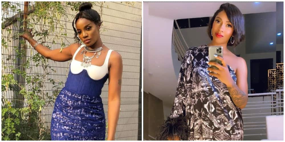 Seyi Shays shares her side of the story following fight with Tiwa Savage, Nigerians react