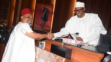 Those who wished Buhari dead are behind Jubrin's rumour - Ngige declares