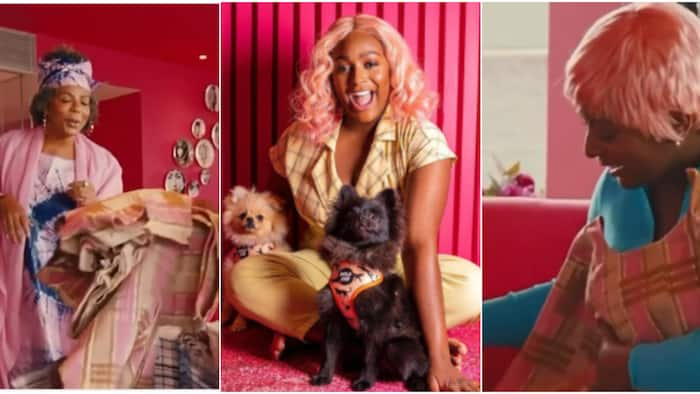 Sweet moment DJ Cuppy's mum surprised singer & her dogs with pink aso oke captured on camera, many react