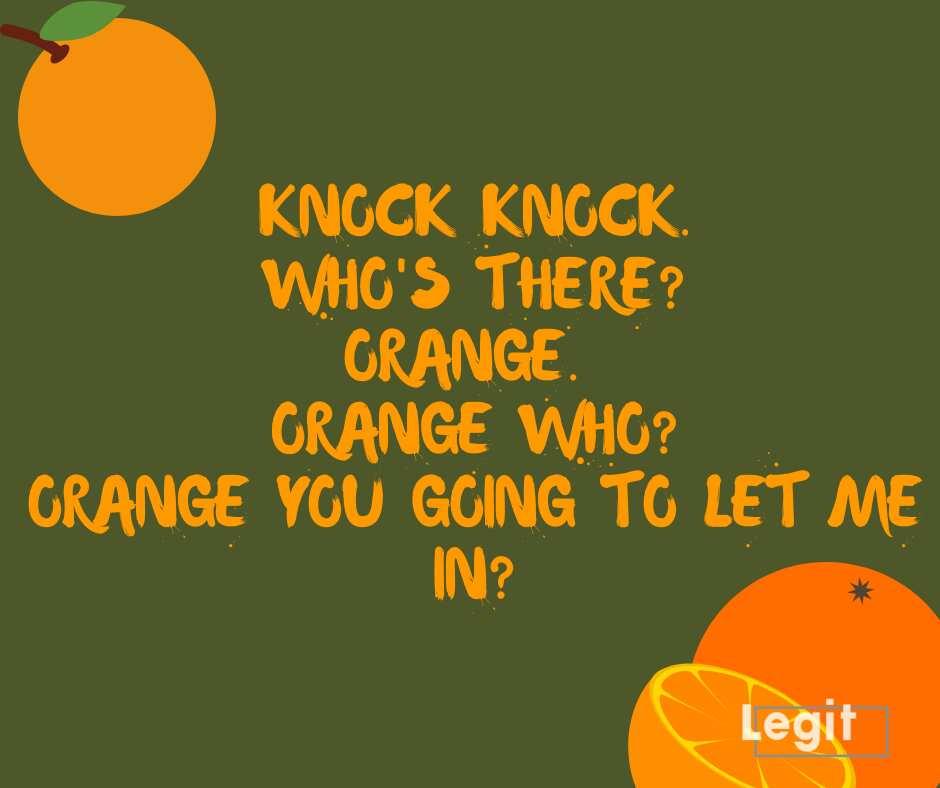 Kids knock knock jokes