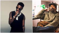 Wizkid, Damian Marley link up, chat about love for each other's music, family and plans for collaborations