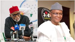 Just in: 2 APC governors clash over anti-open grazing laws
