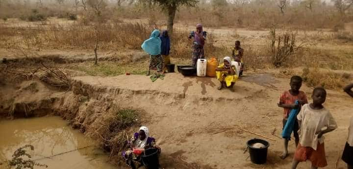 Yankin jihar Adamawa inda jama'a ke shan ruwa daya da dabbobinsu