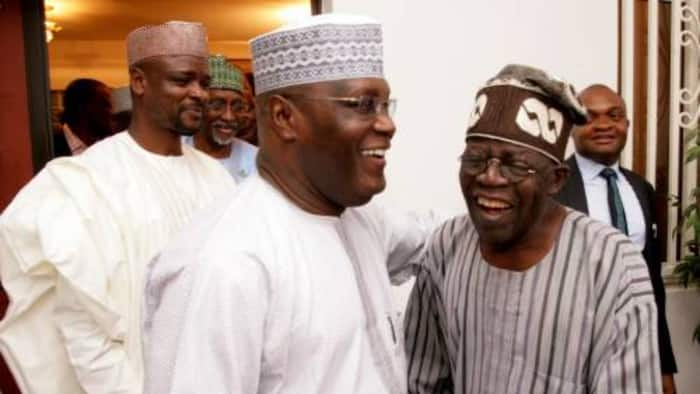 Just in: Are Atiku, Tinubu meeting to form a new party ahead of 2023? Jonathan's former minister Maku speaks