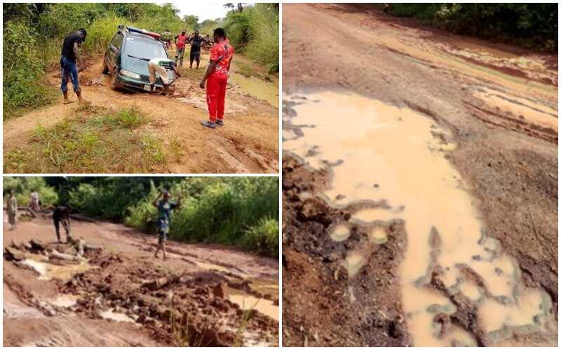 Commuter begs President Buhari over poor state of Benue road - Latest News in Nigeria & Breaking Naija News 24/7 | LEGIT.NG