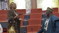 3 times Remi Tinubu had altercations with her colleagues in the Senate