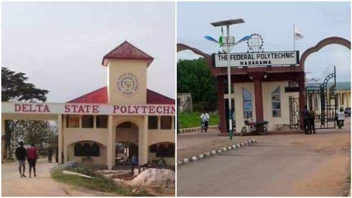 UTME 2021: Polytechnics that have released their cut-off marks