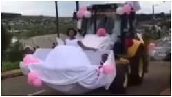 Couple go viral for 'odd choice of transportation on their wedding day (video)