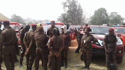 Amotekun jobs: Police, NSCDC screen 2,593 applicants