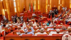 Senate confirms INEC REC nominee, ICRC director general