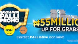 Save and Win Palli Promo: 50 Lucky Union Bank Customers Just Got Richer!