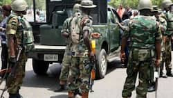 Pythons are dancing to swallow criminals - Army chief declares as Operation Python Dance III commences in Borno, Yobe
