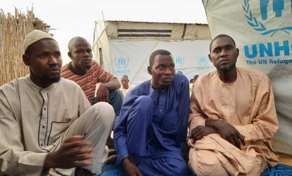 Borno: 'Yan gudun hijira sun koka da rashin samu abinci