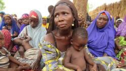 Zamfara women in IDP camp lament after bandits burnt their village
