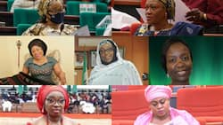 List: Meet 19 female lawmakers out of 469 members of ninth National Assembly