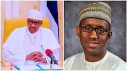 Insecurity: Former EFCC boss Ribadu refutes claims accusing Buhari, others of sponsoring bandits