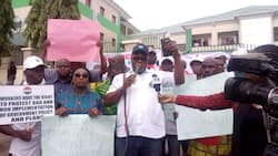 Placard wielding workers take over headquarters of SON in Abuja, demand investigation by EFCC, ICPC