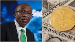 Bureau De Change operators want CBN to prevent cryptocurrency from disrupting forex market